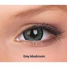 Sparkle Grey Mushroom