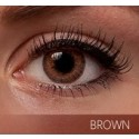 Freshlook Colorblends Brown