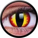 Crazy One-Day Dragon Eyes