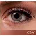 Freshlook Colorblends Grey