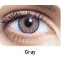 Freshlook One Day Gray