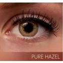Freshlook Colorblends Pure Hazel