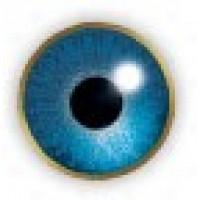 Air Optix Colors Blue