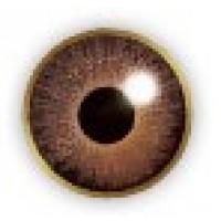 Air Optix Colors Brown