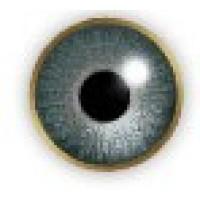 Air Optix Colors Gray
